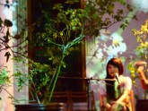 The Tale of the Japanese and the Garden 3 Apr 2015 by Megumi Matsubara (7)